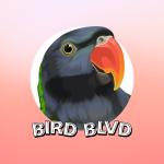 BirdBlvd - Avatar