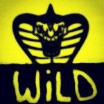 Wild_cobraa - Avatar